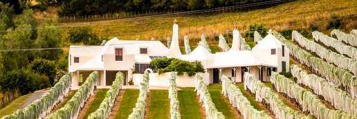 TE MATA WINERY