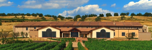 Cotarella Winery